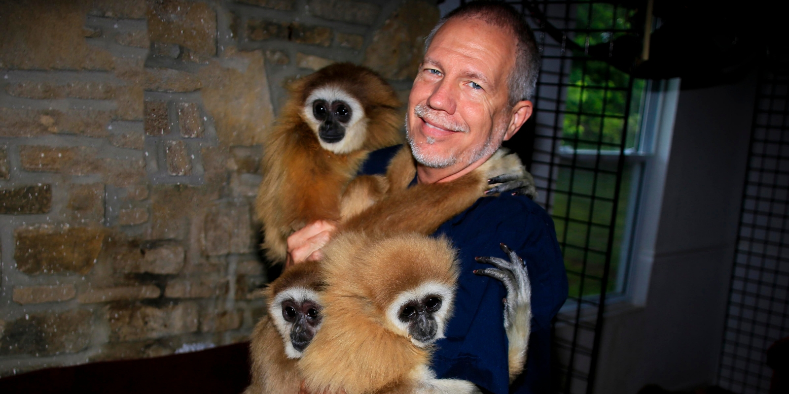 Dana Savorelli smiles while being hugged by 3 gibbon monkeys from Monkey Island Rescue
